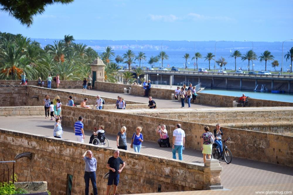 discover palma capital